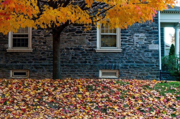 Photographed November 2 2013  in Germantown; Philadelphia PA